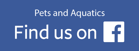Hollybush Pets & Aquatics Facebook Link (Hollybush Pet Shop)